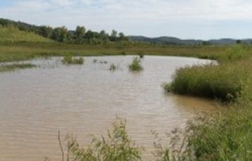 Meramec Bluffs Wetland Mitigation Bank – 2016