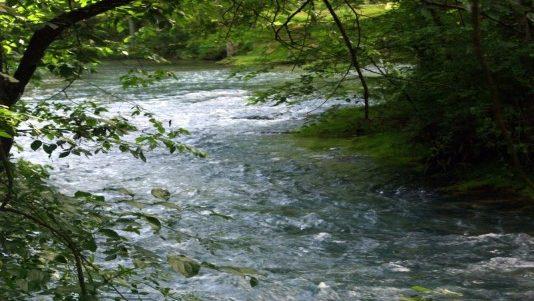 Meramec Stream Restoration Site – 2006