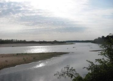 Red River Wetland & Riparian Mitigation Site – 2008