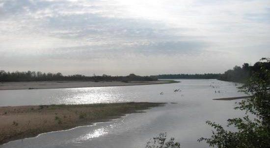 Red River Wetland & Riparian Mitigation Site – 2008
