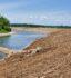 Cuivre River Riparian Mitigation Site – 2020